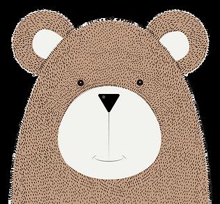 Open_Loft_Bear.png
