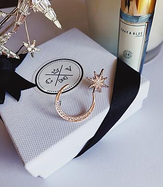 CERES Star & Moon Earrings