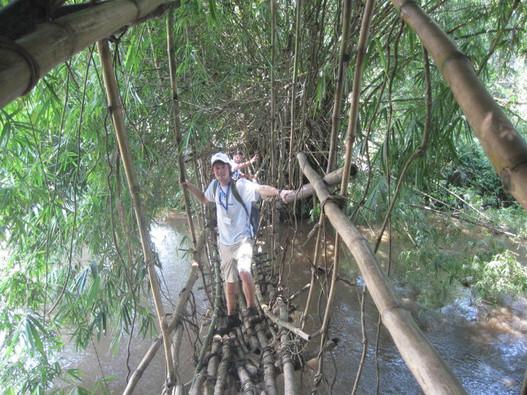 Bridge in Congo