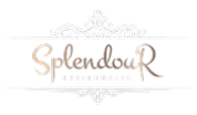 Cópia de Logo_Splendour.png