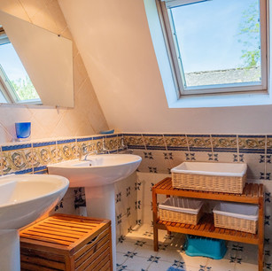 The Upstairs Shower Room I
