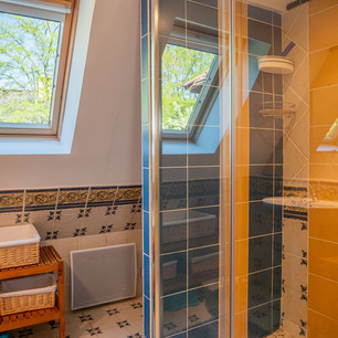 The Upstairs Shower Room II