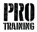 perrie pro training logo_edited.jpg