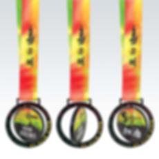 100km_medal.jpg
