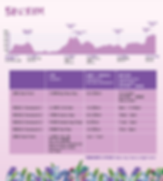 RQ_50k_timetable_edited.png