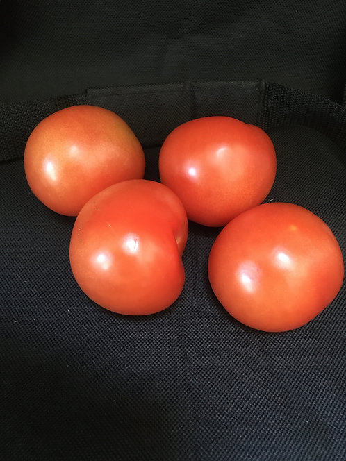 Large Salad Tomatoes each
