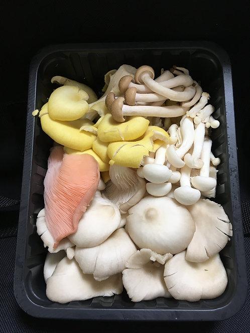 Exotic Mushrooms -250gms