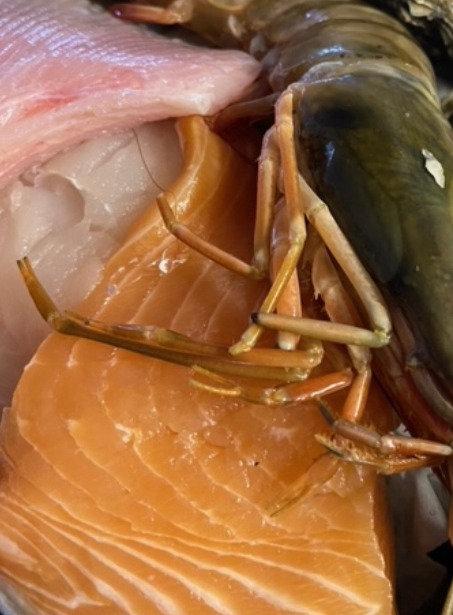 N - Mystery Fish and Shellfish Box  - NO oysters