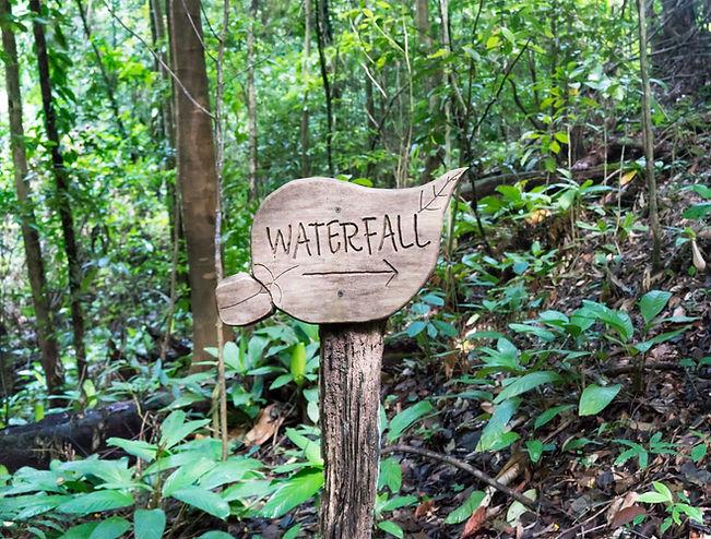 Wooden information sign in shape of leaf
