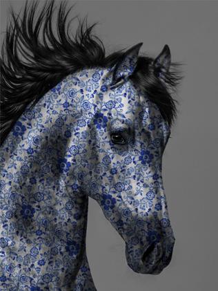 lars tunebo ming horse blue