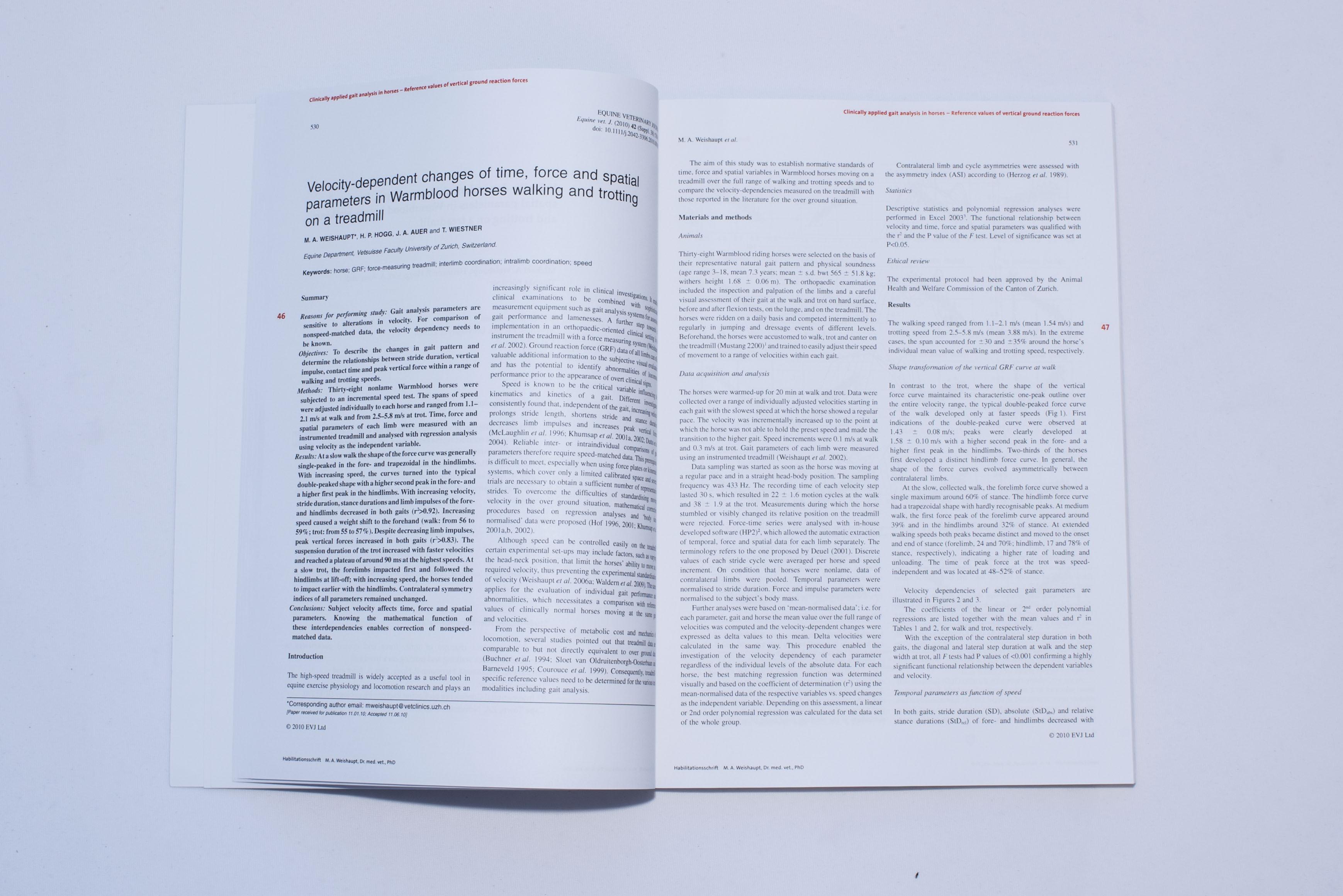 Mehrseitige Dokumente