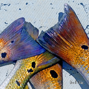 Red Fish Tails