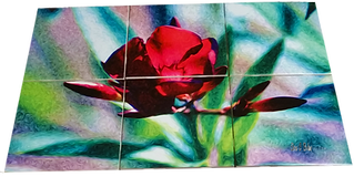 Ceramic Tile Backsplash of a flower