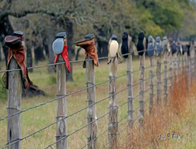 Boots on Fence