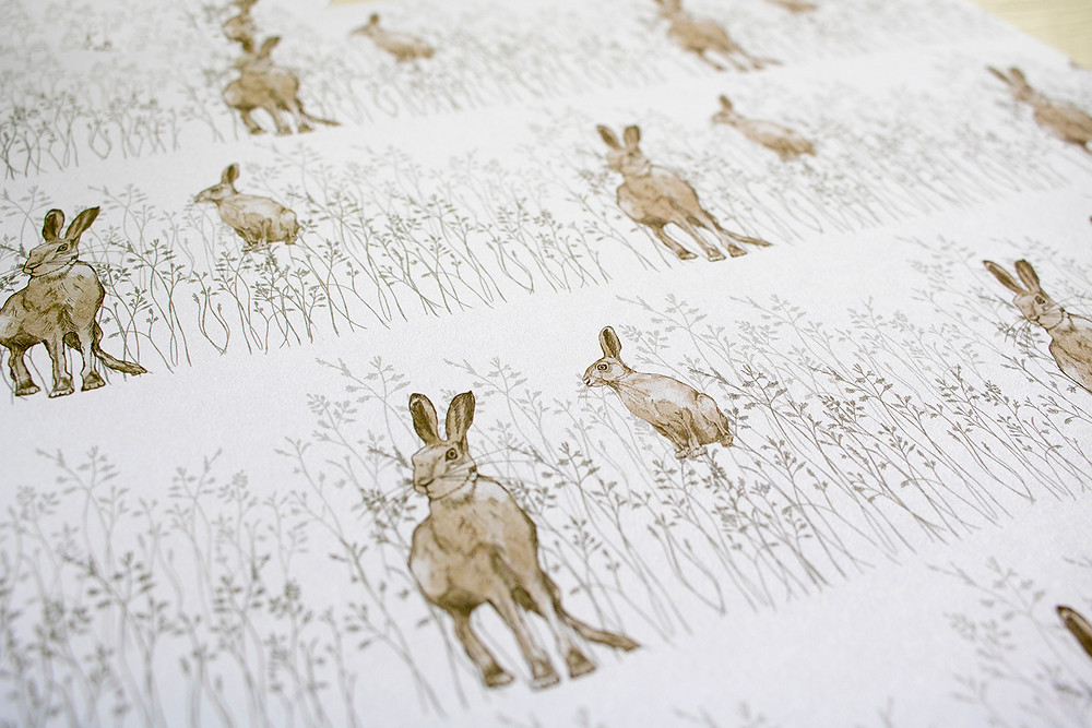 Hare in Meadow Grass