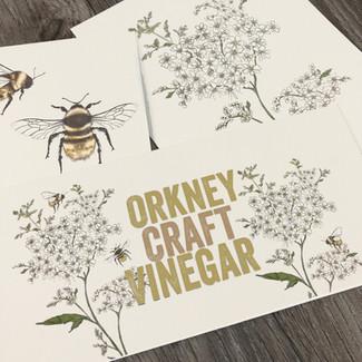 Orkney Craft Vinegar Botanical Illustrations