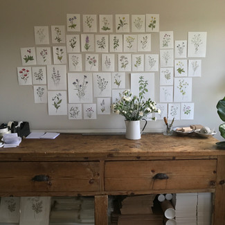 Decorating my studio with Botanical Prints and Dulux Heritage Paint Range