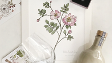 Orcadian Wild Flowers and Ola Gorie Jewellery: Mothers Day Promotion