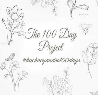 My Personal 100 Day Challenge
