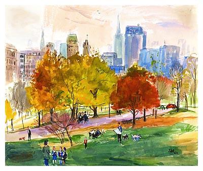 Build Your Own Central Park