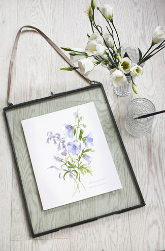 Hackney & Co hand illustrated botanical prints available to buy from Etsy