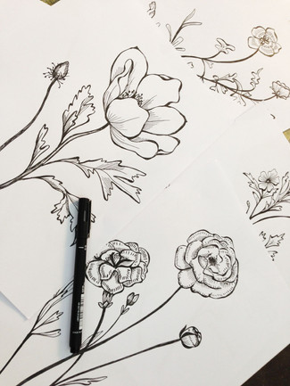 Drawing by Hand: Hand Illustrated Design