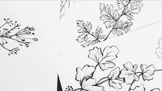 Woodland Collection Design Process 3