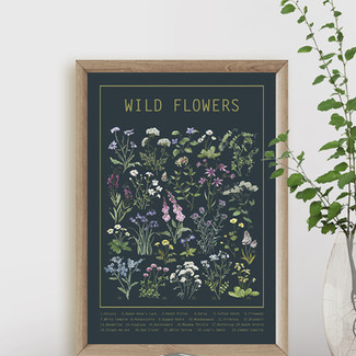 Wild Flowers & Wild Herbs Posters now available in my Etsy Shop