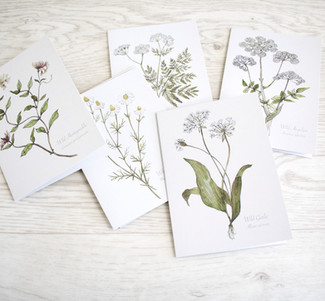 My Orkney Botanical Wildflower and Herbs Series is now available on Cards.