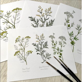 Free P&P on all Botanical Prints in my HackneyandCo Etsy shop.
