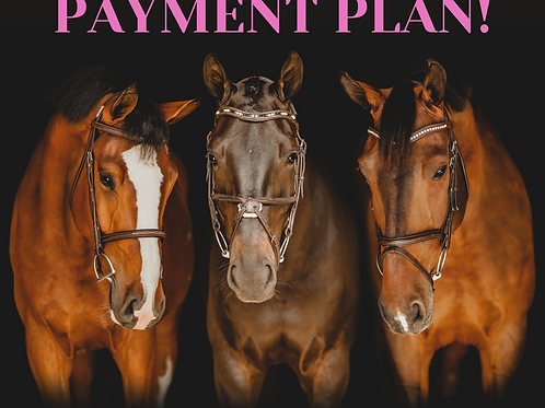 copy of Black Background Masterclass - Payment Plan