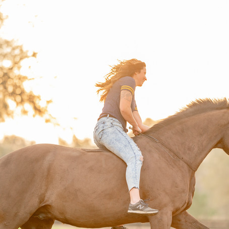 5 STEPS TO A SUCCESSFUL PHOTOSHOOT WITH YOUR HORSE