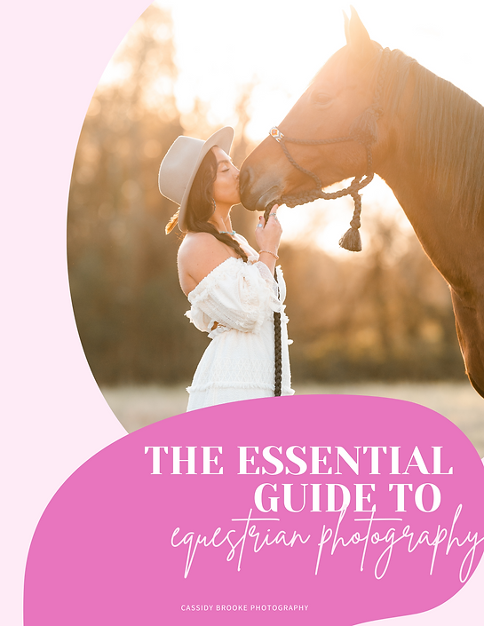 Beginner's Guide to Equestrian Photography.png