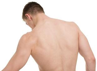 male Backxxl_66819204.jpg