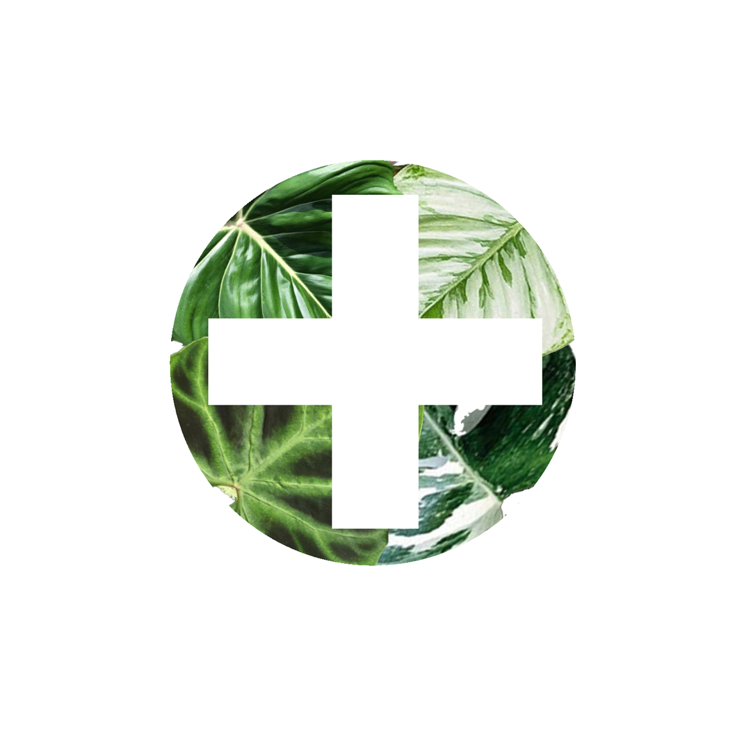 plant doctor.png