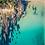 Thumbnail: Tathra Beach Aerial