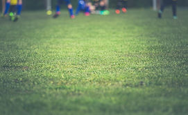field-grass-sport-ground-104675.jpg