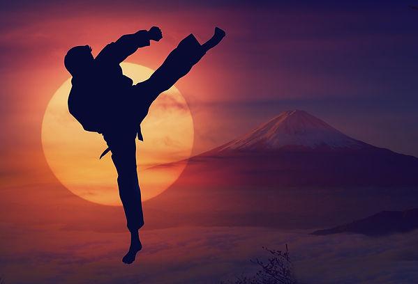 karate-4082019_1920.jpg