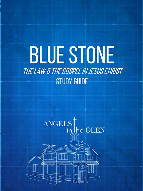 Blue Stone Study Guide - 66 Pages, PDF