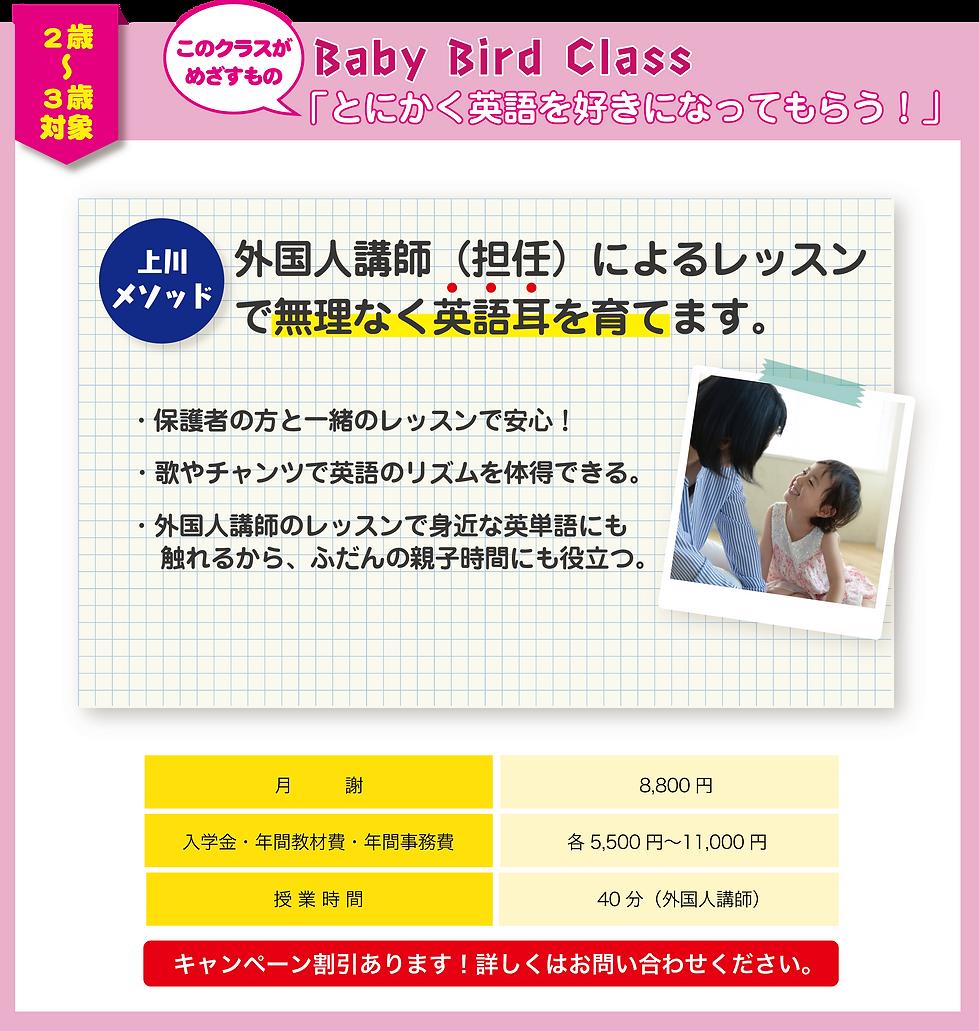 2歳〜3歳(baby bird class)のレッスンプラン