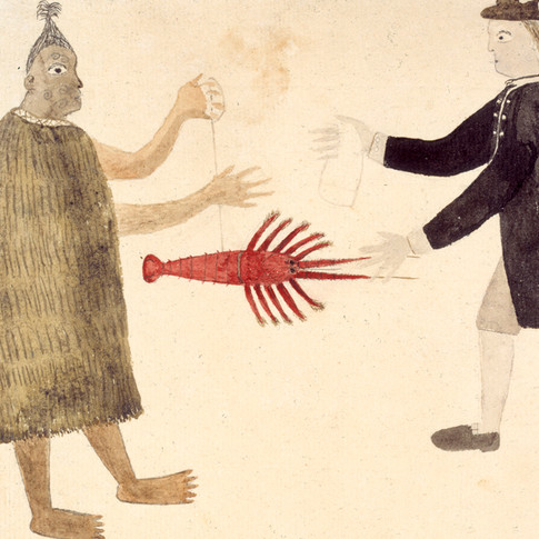 Drawing by Tupaia, of Maori bartering a crayfish © British Library