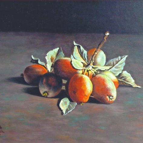 Notaris appeltjes
