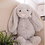 Thumbnail: Peluche Baby Bunny