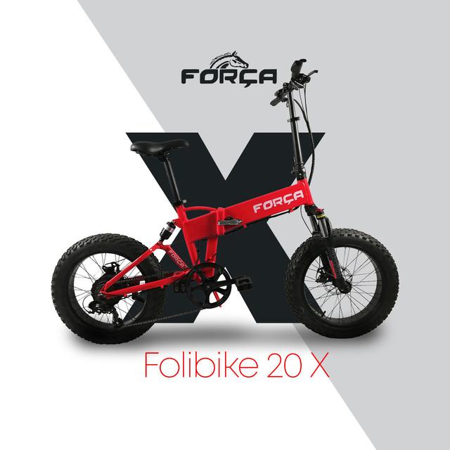 Dashboard_Teaser_Forca_Foliebike.jpg