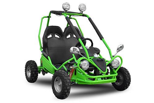 eScooter Goerlitz Nitro Motors Eco midi Buggy 450W