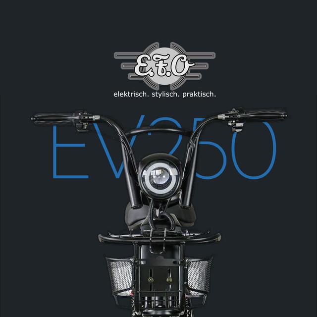 escooter-goerlitz-efo-ev250.jpg
