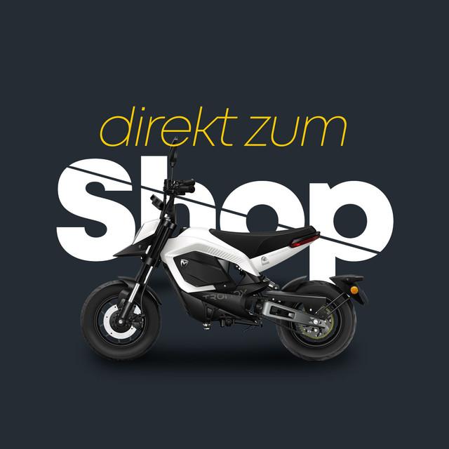 escooter-goerlitz-shop-direkteinstieg.jp