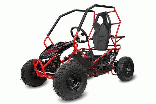 Nitro Motors Eco Gokart RACER 1000W 36V 2-Stufen Drossel Kinderbuggy Kinder-Quad
