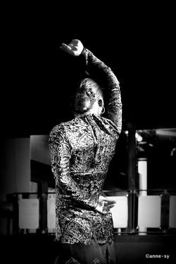 Flamenco_061.JPG