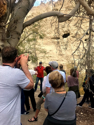 A teaching time at En Gedi; David would have hid from Saul in one of these caves